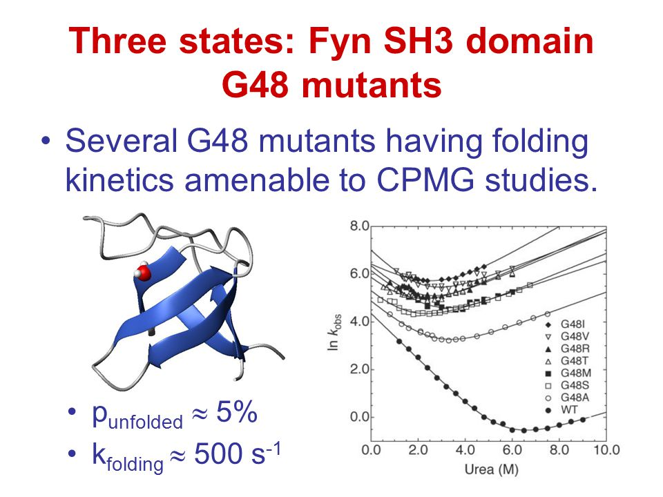 Three states: Fyn SH3 domain G48 mutants