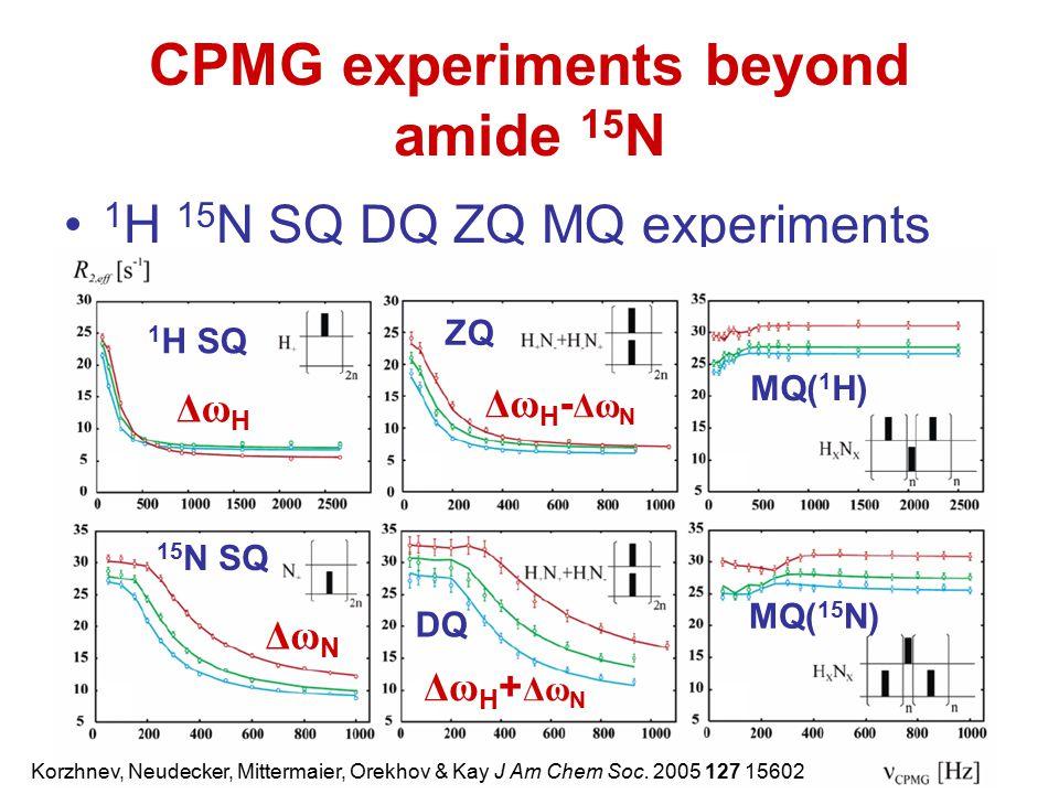 CPMG experiments beyond amide 15N