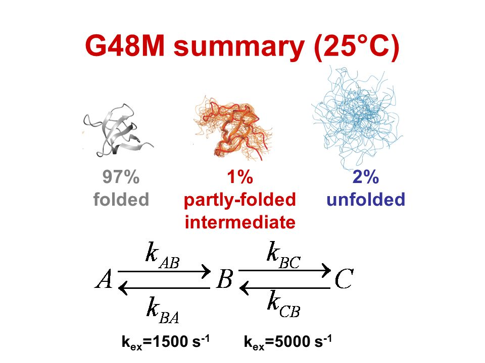 G48M summary (25°C) 97% folded 1% partly-folded intermediate 2%