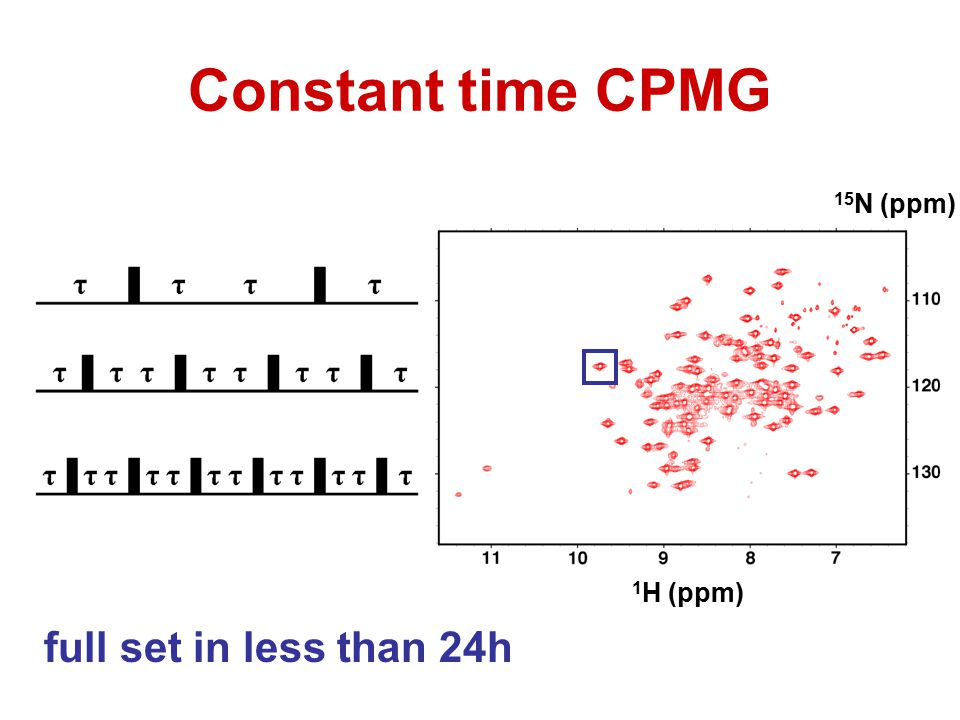 Constant time CPMG 15N (ppm) 1H (ppm) full set in less than 24h