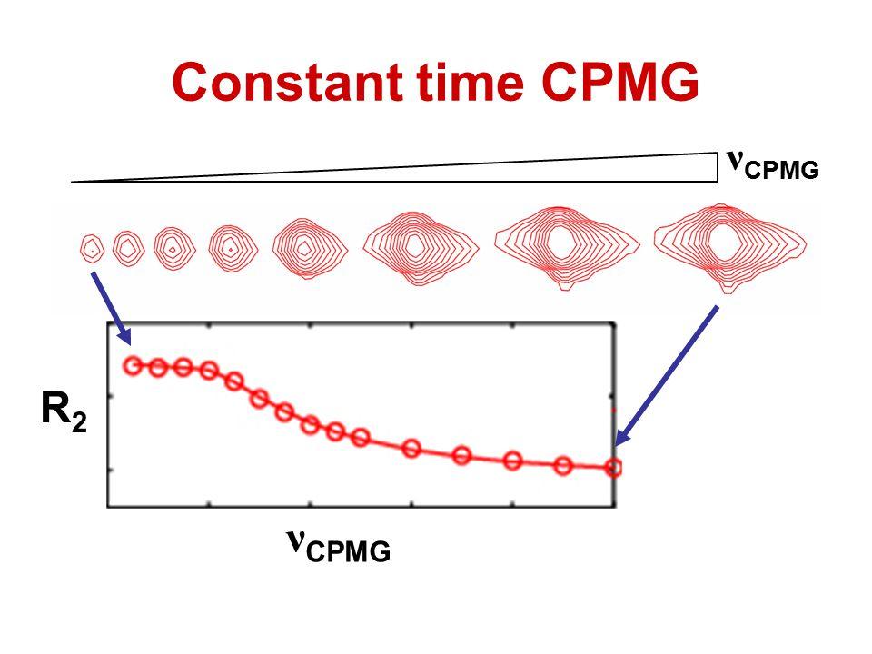 Constant time CPMG νCPMG R2 νCPMG