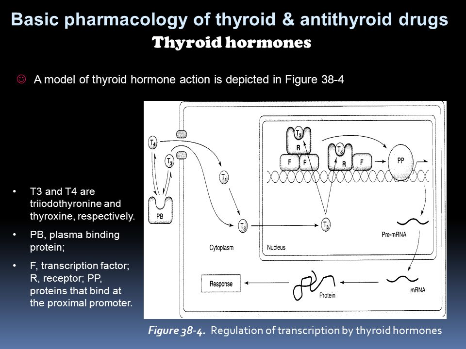 Basic pharmacology of thyroid & antithyroid drugs Thyroid hormones