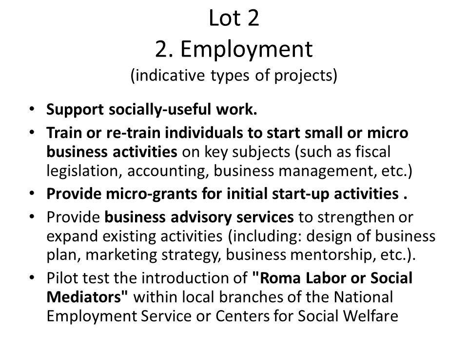 Lot 2 2. Employment (indicative types of projects)