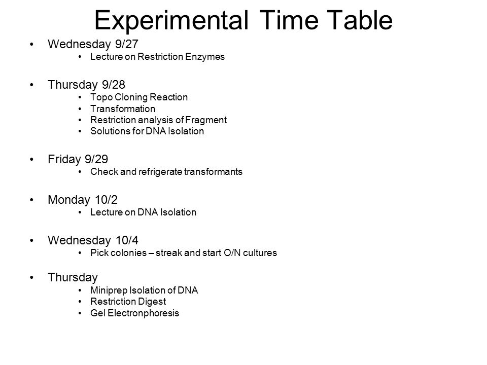 Experimental Time Table