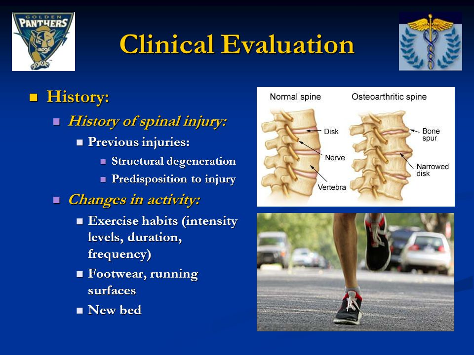 Clinical Evaluation History: History of spinal injury: