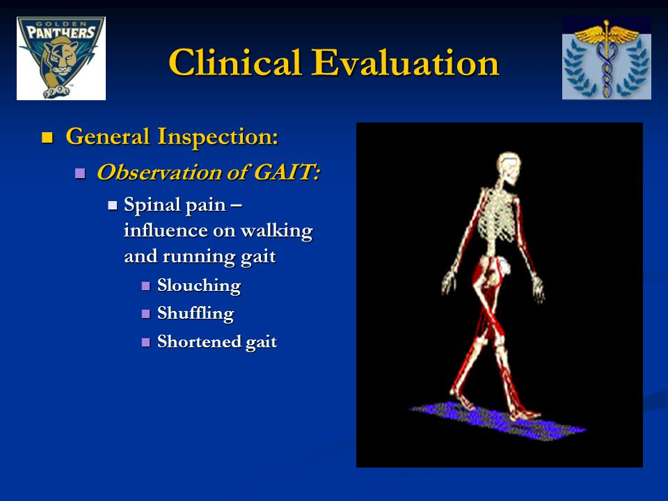 Clinical Evaluation General Inspection: Observation of GAIT: