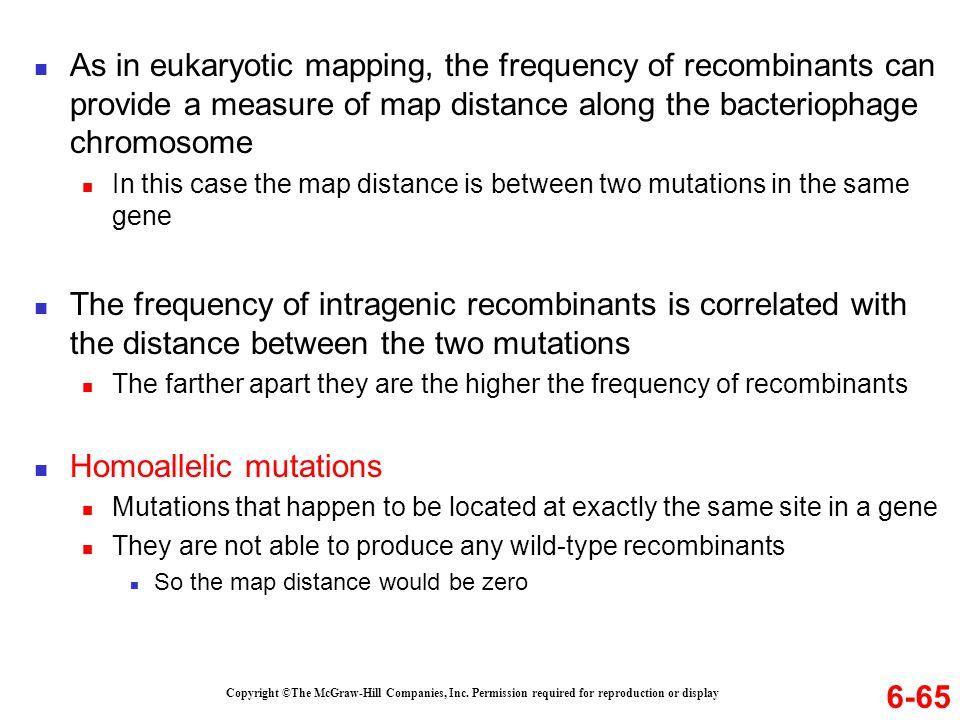 Homoallelic mutations
