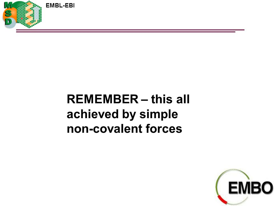 REMEMBER – this all achieved by simple non-covalent forces