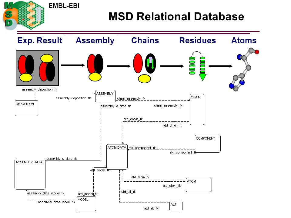 MSD Relational Database