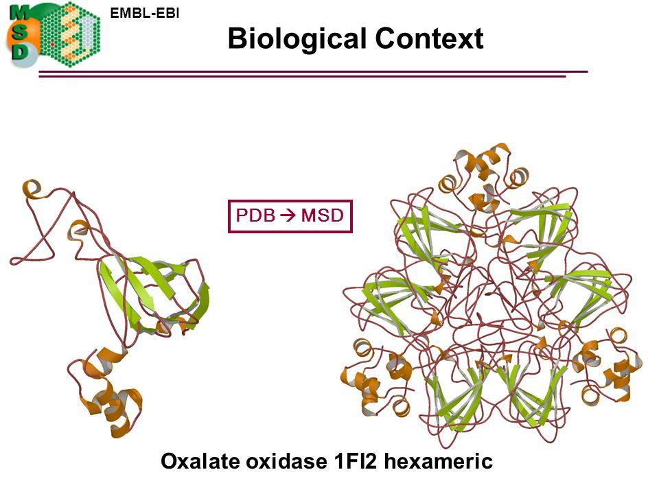 Biological Context PDB  MSD Oxalate oxidase 1FI2 hexameric