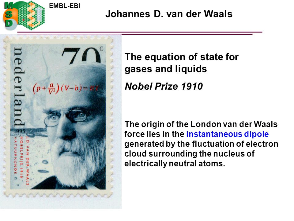 Johannes D. van der Waals