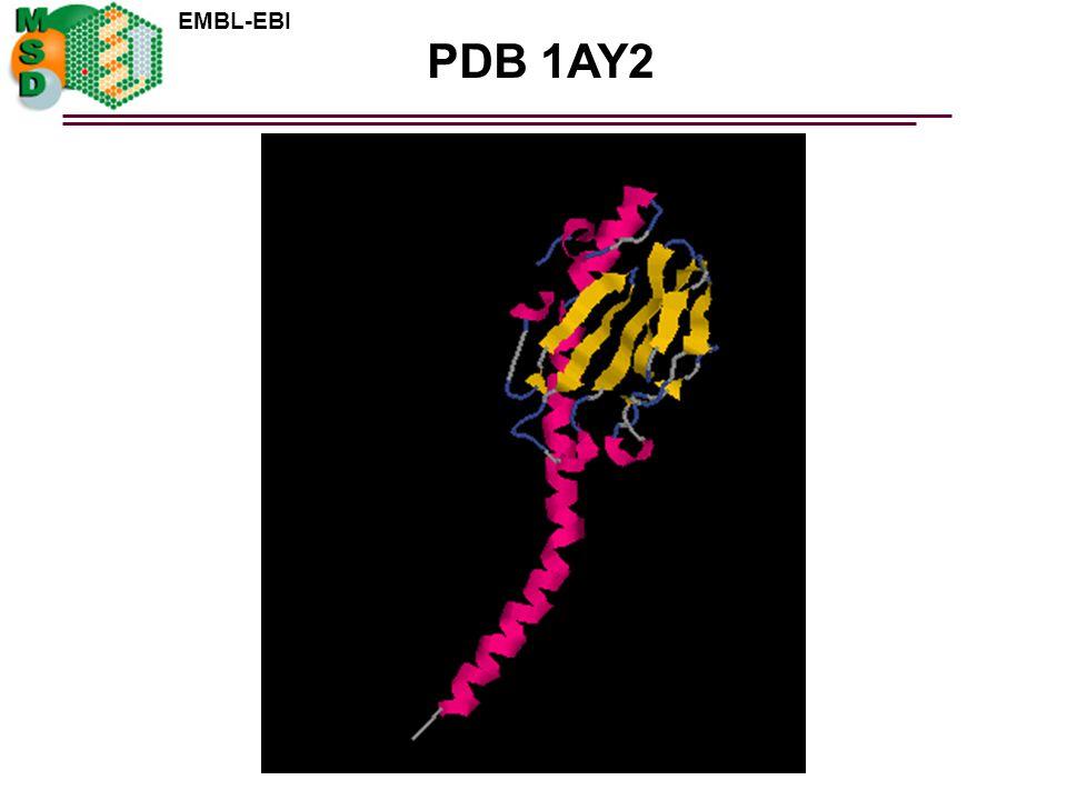 PDB 1AY2