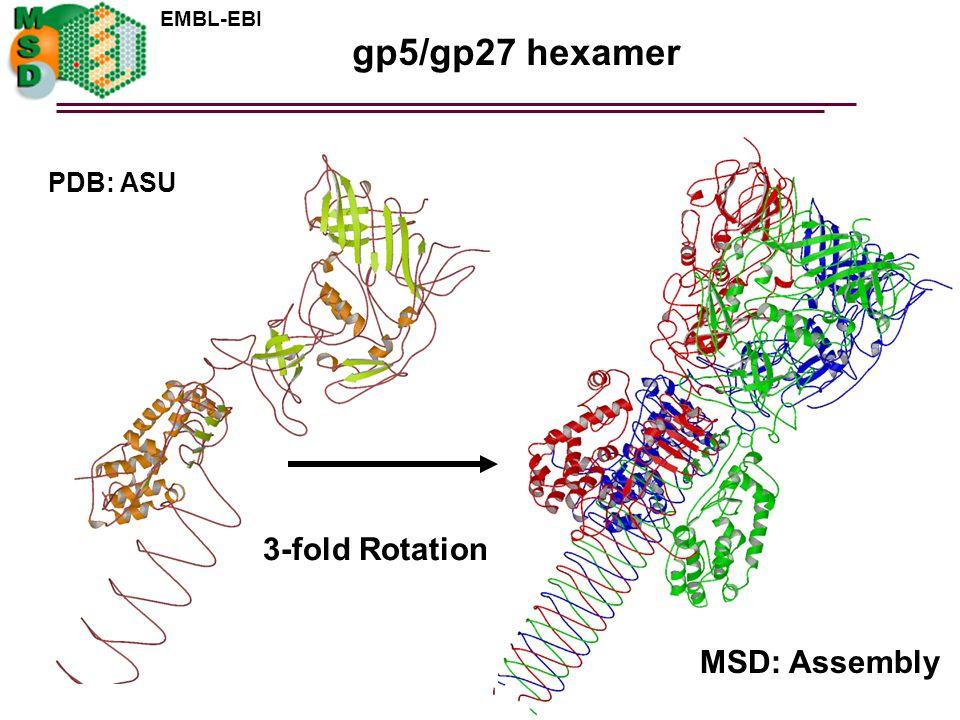 gp5/gp27 hexamer PDB: ASU 3-fold Rotation MSD: Assembly