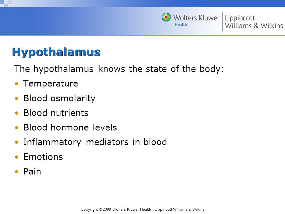 Hypothalamus The hypothalamus knows the state of the body: Temperature