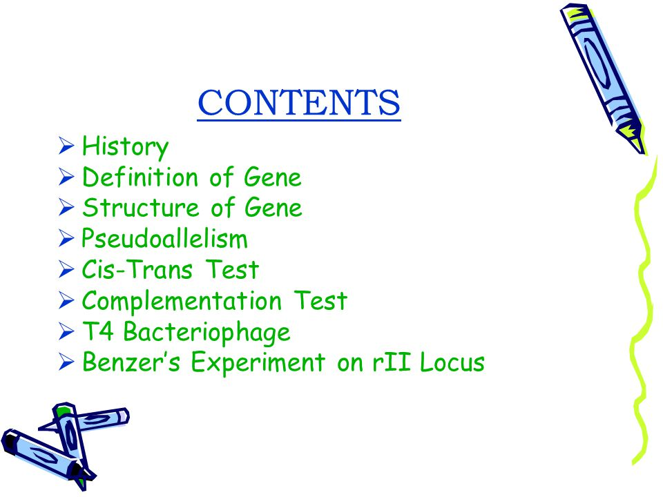 CONTENTS History Definition of Gene Structure of Gene Pseudoallelism