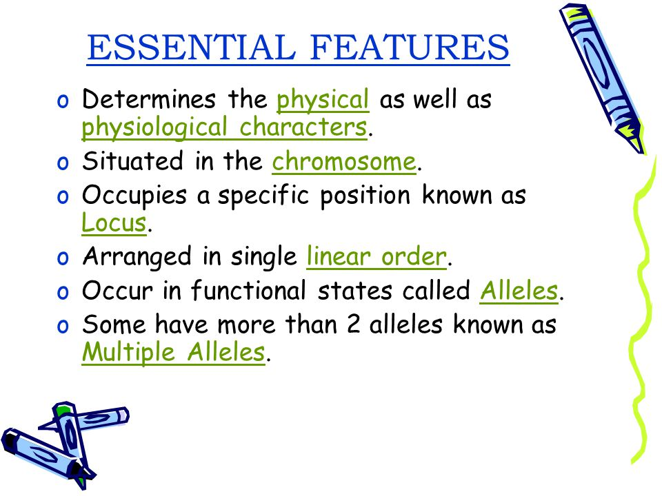 ESSENTIAL FEATURES Determines the physical as well as physiological characters. Situated in the chromosome.