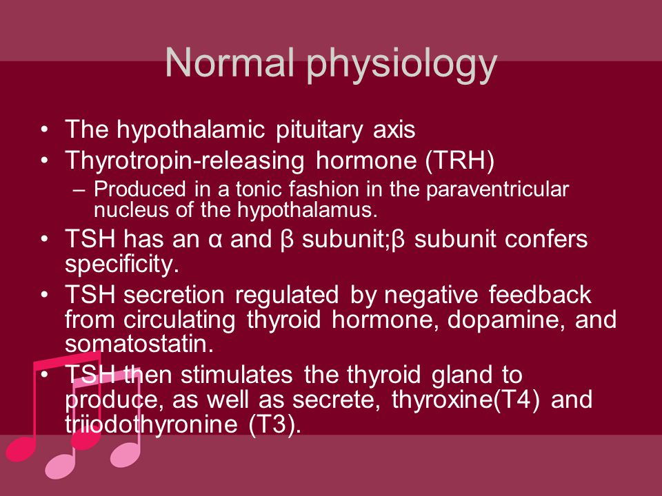 Normal physiology The hypothalamic pituitary axis
