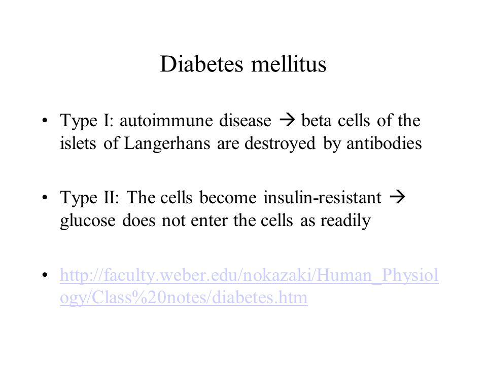 Diabetes mellitus Type I: autoimmune disease  beta cells of the islets of Langerhans are destroyed by antibodies.
