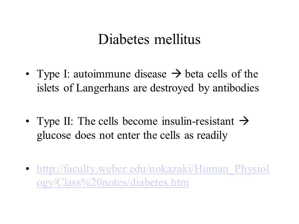 type 1 diabetes mellitus the autoimmune disease