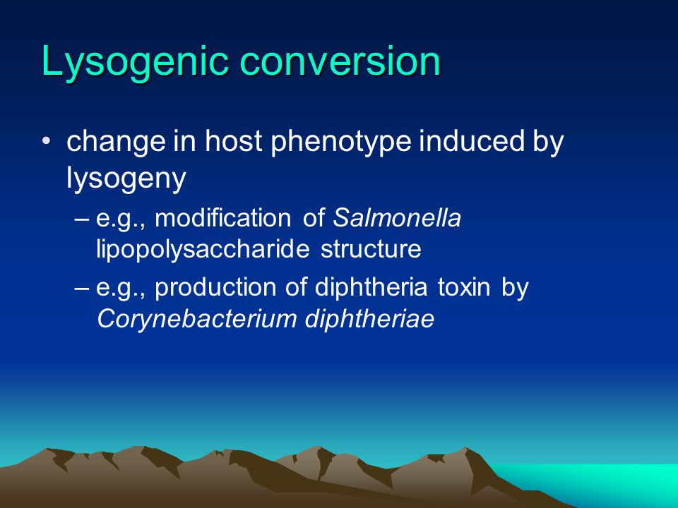 Lysogenic conversion change in host phenotype induced by lysogeny