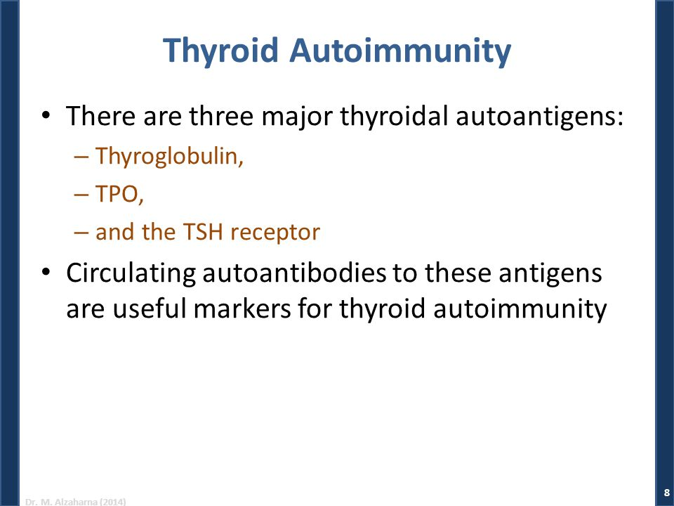 Thyroid Autoimmunity There are three major thyroidal autoantigens:
