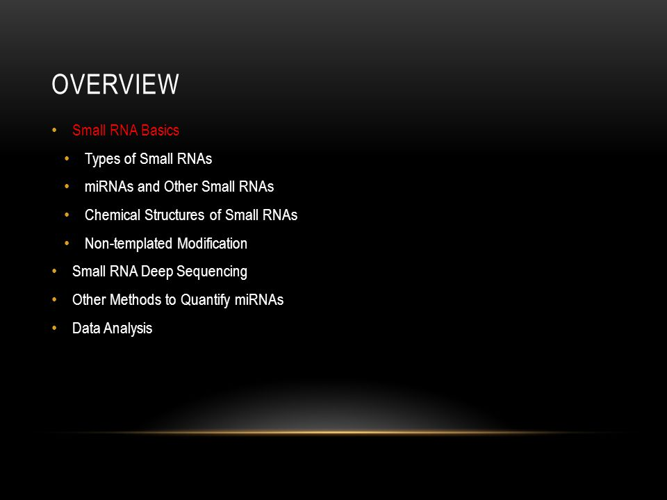 Overview Small RNA Basics Types of Small RNAs
