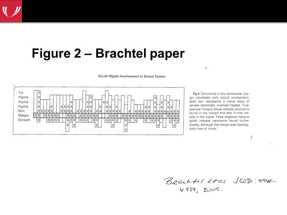 Figure 2 – Brachtel paper