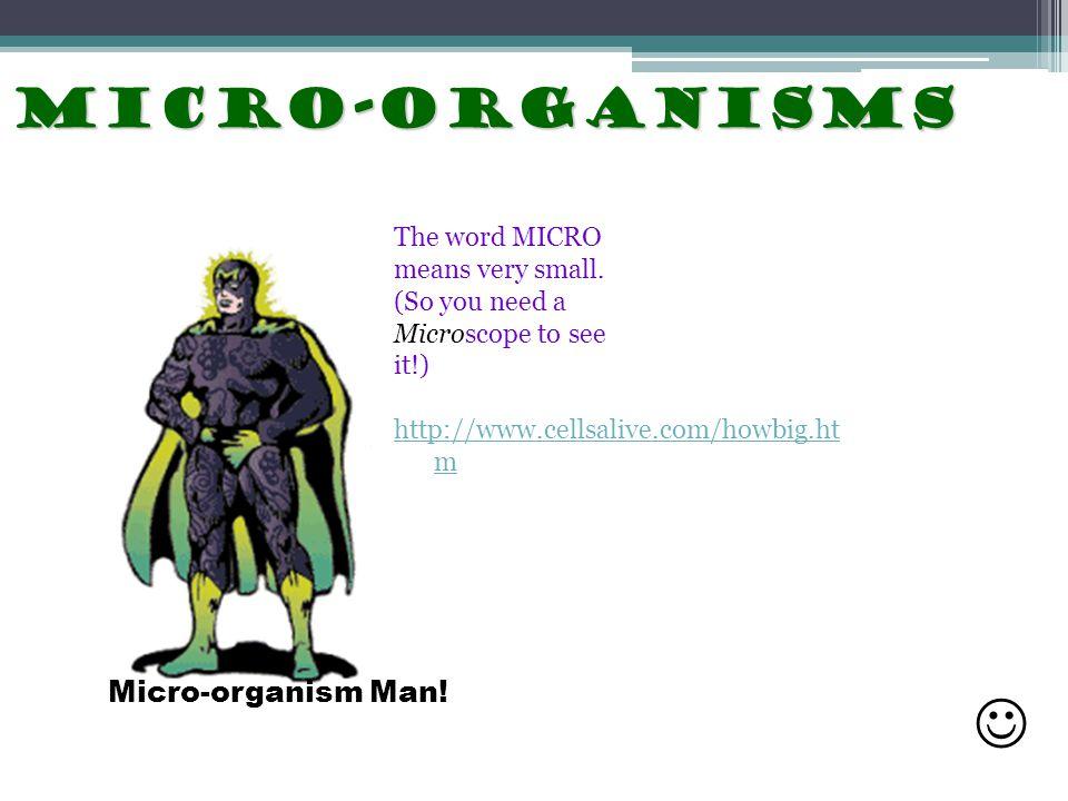  Micro-organisms Micro-organism Man! The word MICRO means very small.