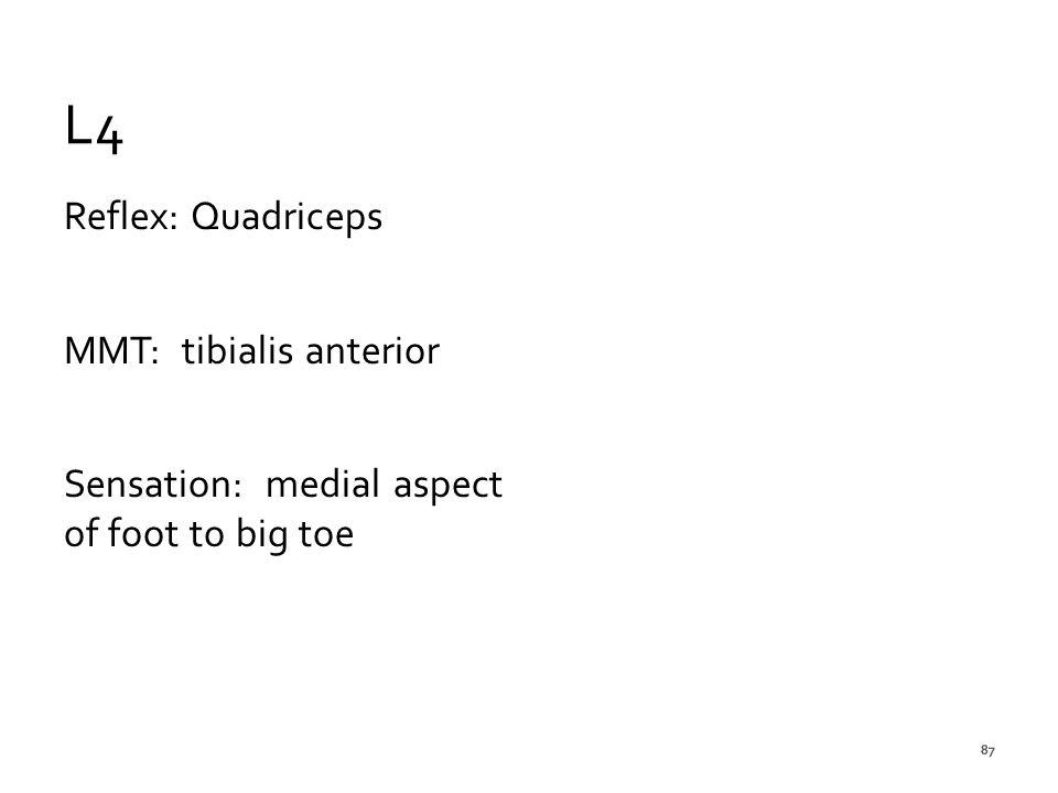 L4 Reflex: Quadriceps MMT: tibialis anterior