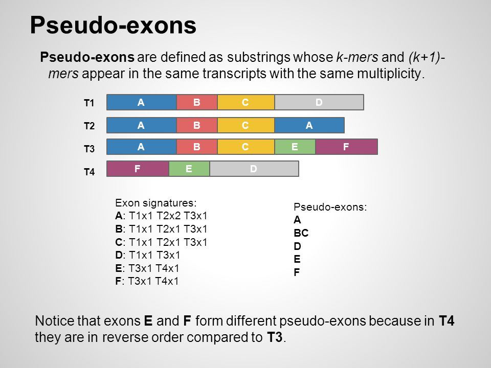 Pseudo-exons Pseudo-exons are defined as substrings whose k-mers and (k+1)- mers appear in the same transcripts with the same multiplicity.