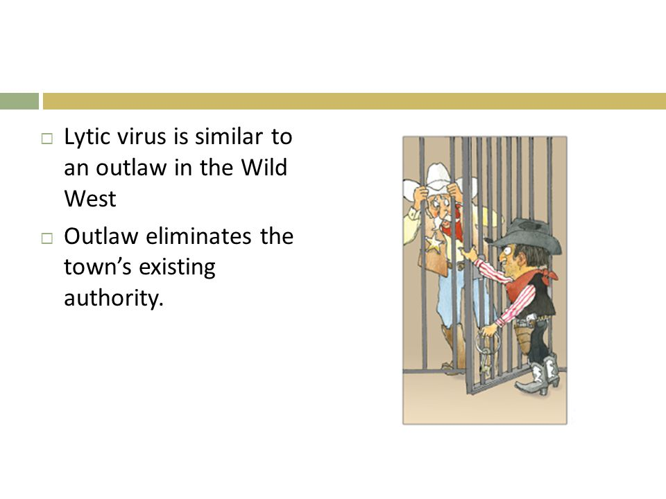 Lytic virus is similar to an outlaw in the Wild West