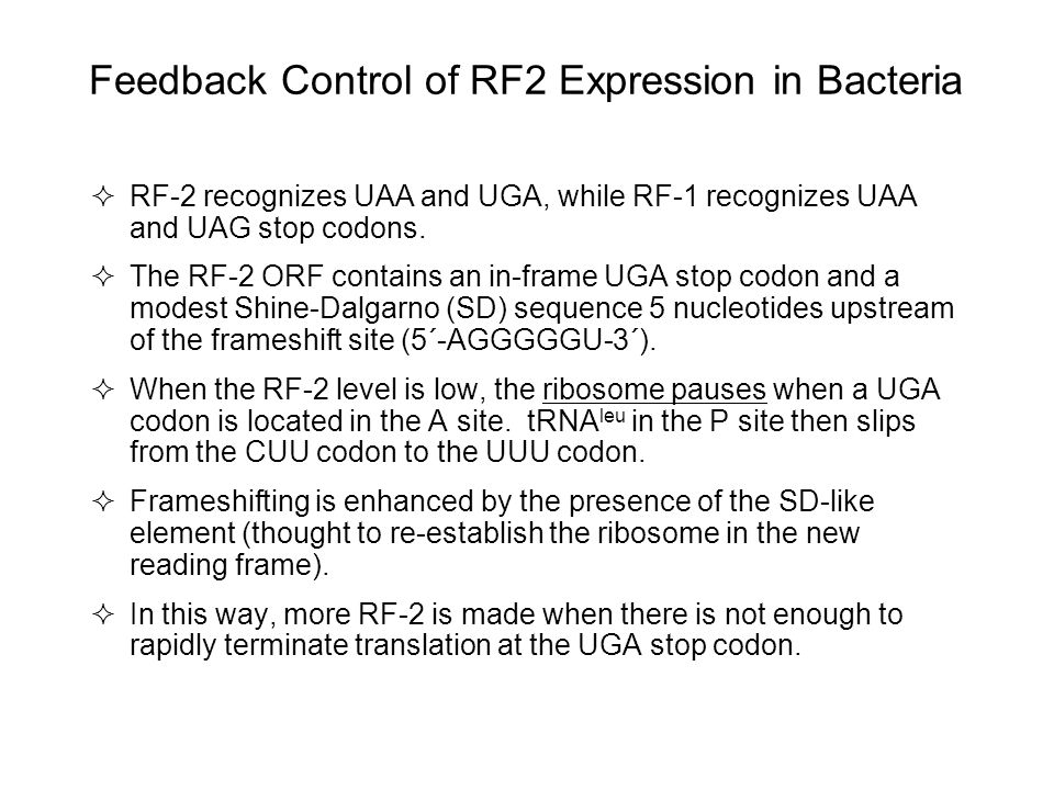 Feedback Control of RF2 Expression in Bacteria
