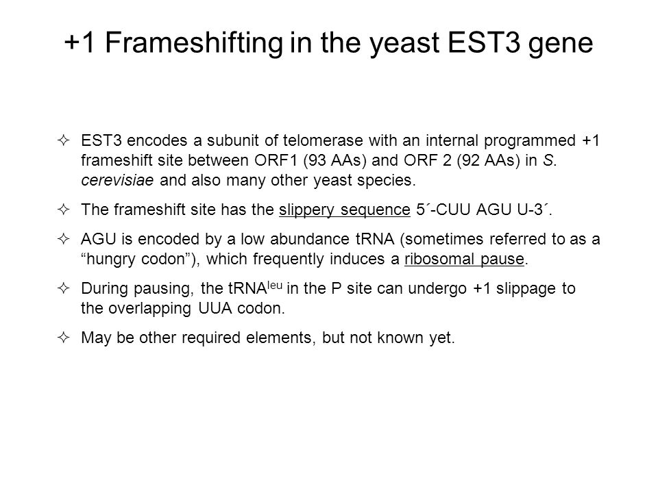 +1 Frameshifting in the yeast EST3 gene