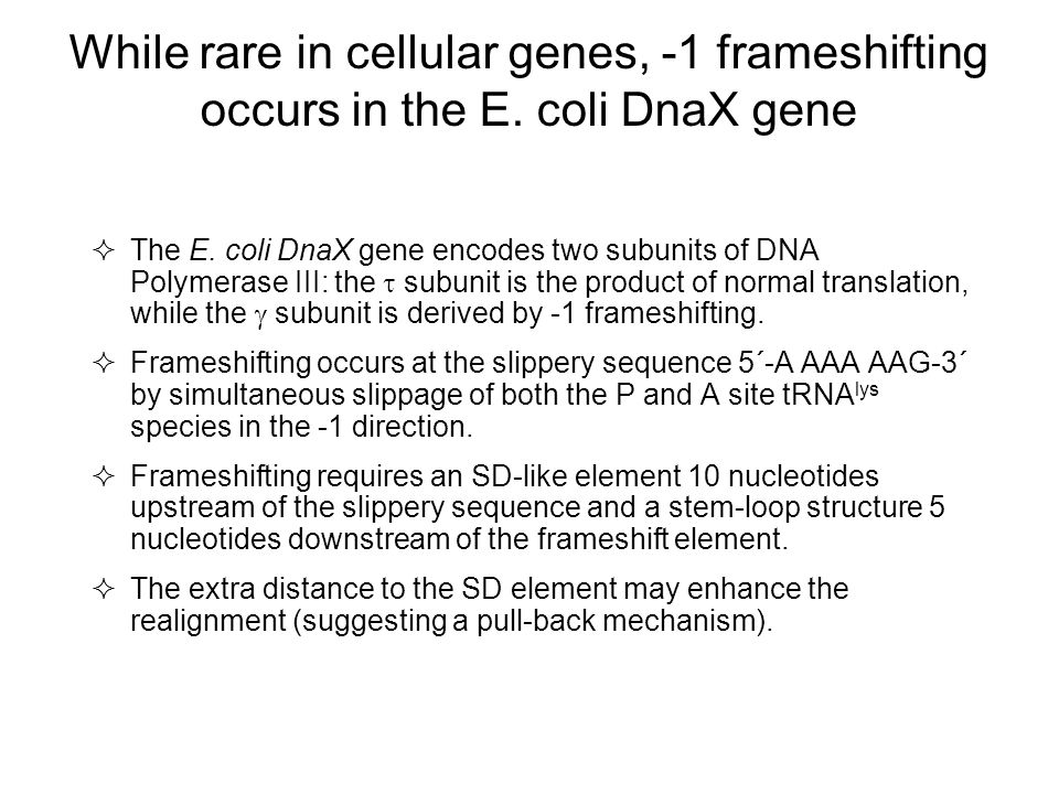 While rare in cellular genes, -1 frameshifting occurs in the E