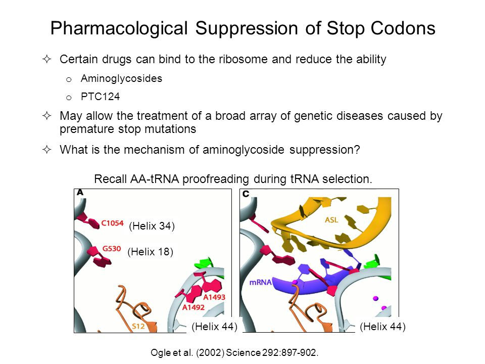 Pharmacological Suppression of Stop Codons