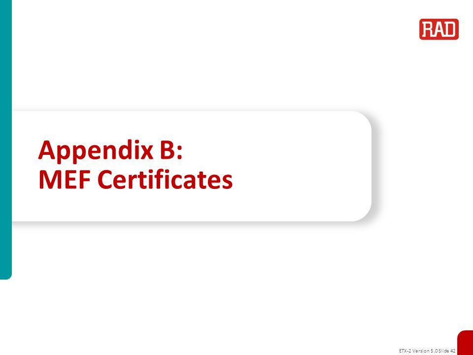 Appendix B: MEF Certificates