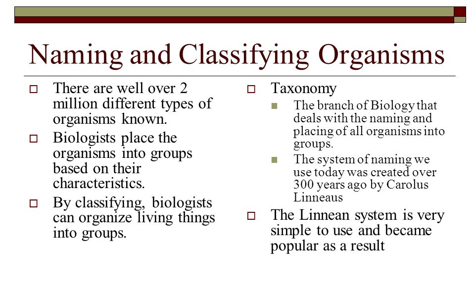 Naming and Classifying Organisms