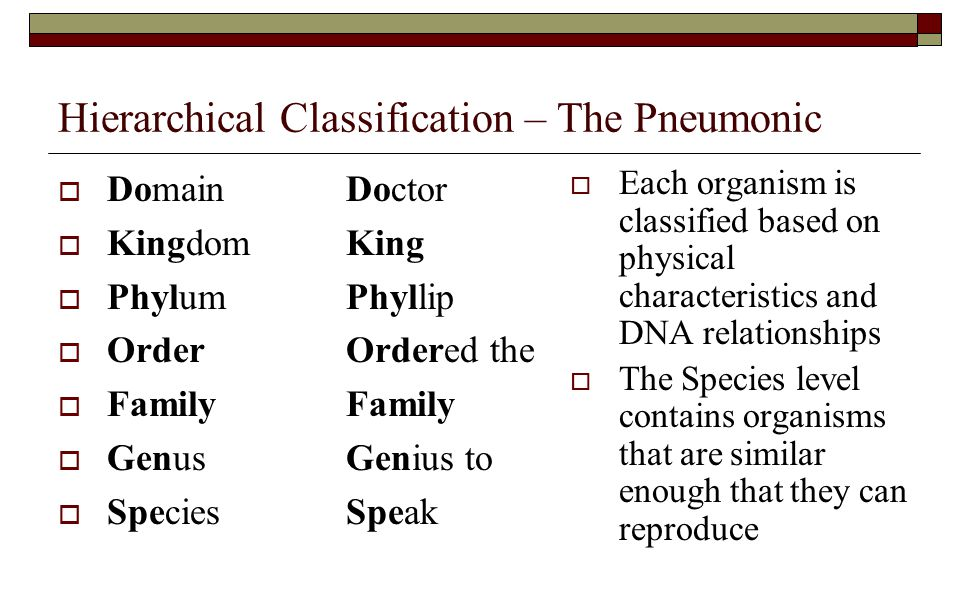 Hierarchical Classification – The Pneumonic
