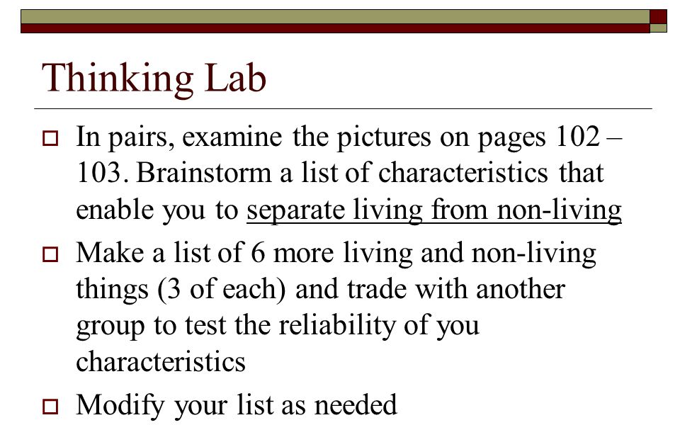 Thinking Lab
