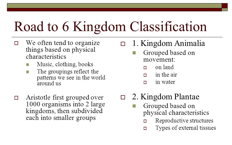 Road to 6 Kingdom Classification