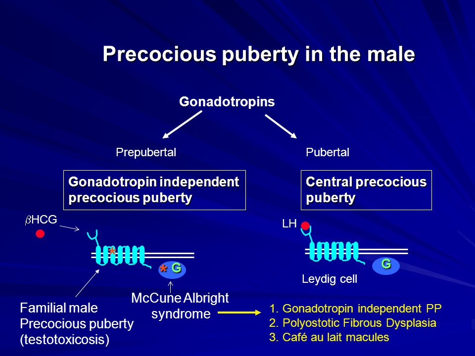 Precocious puberty in the male
