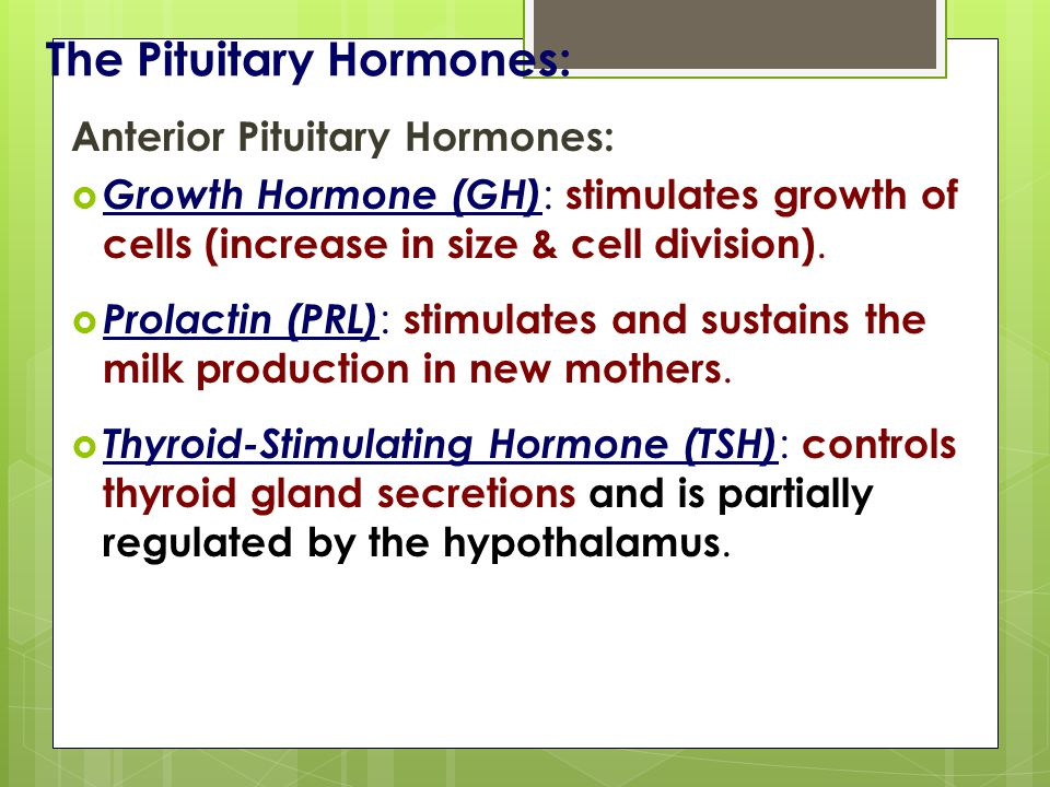 The Pituitary Hormones: