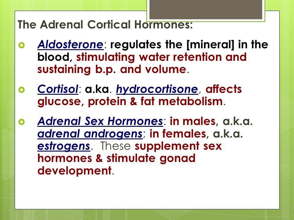 The Adrenal Cortical Hormones: