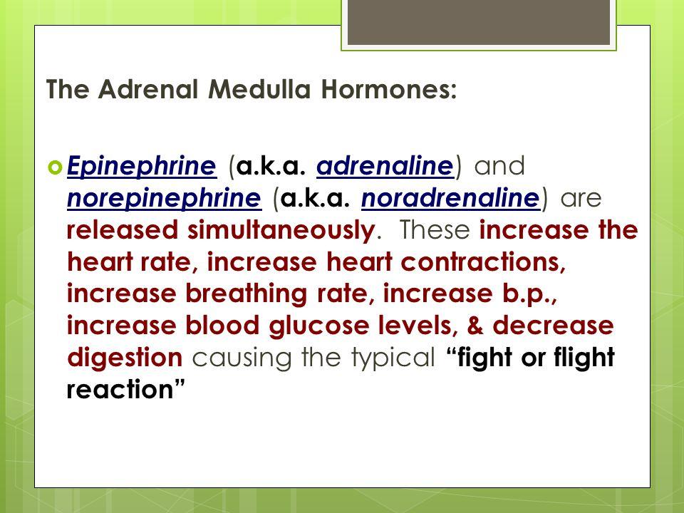 The Adrenal Medulla Hormones: