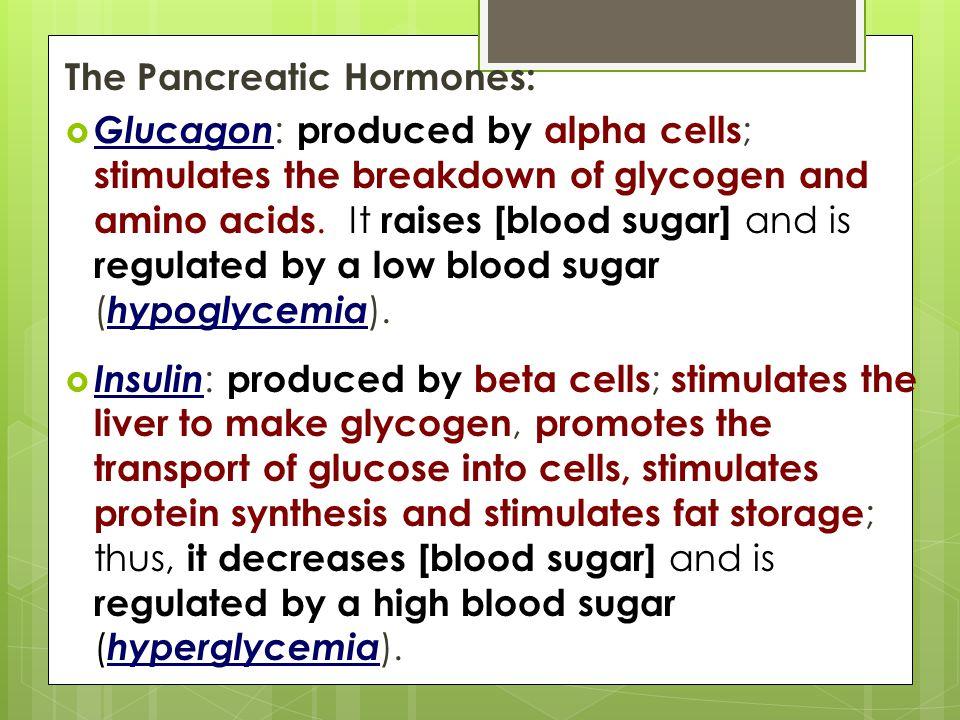 The Pancreatic Hormones: