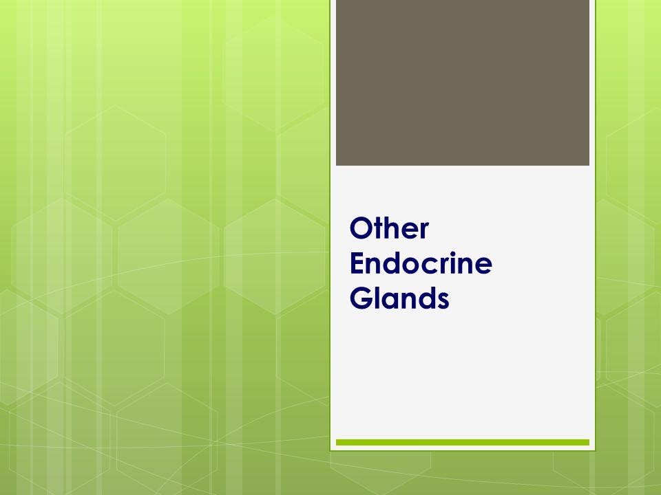 Other Endocrine Glands