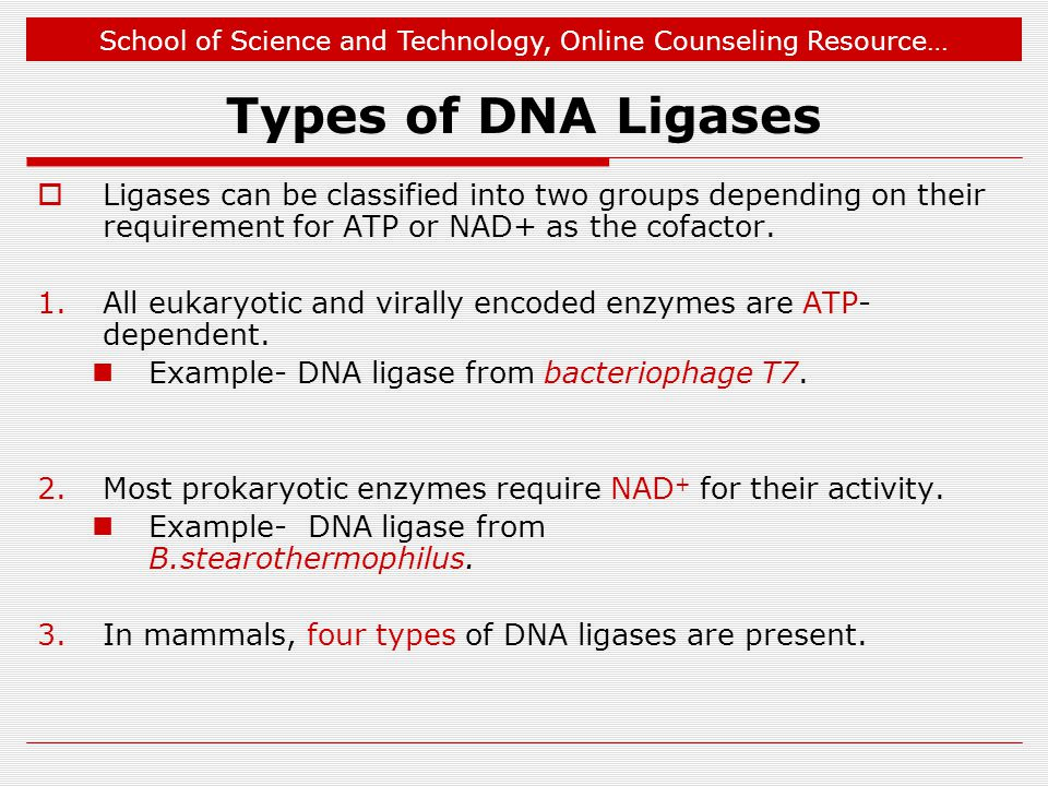Types of DNA Ligases Ligases can be classified into two groups depending on their requirement for ATP or NAD+ as the cofactor.