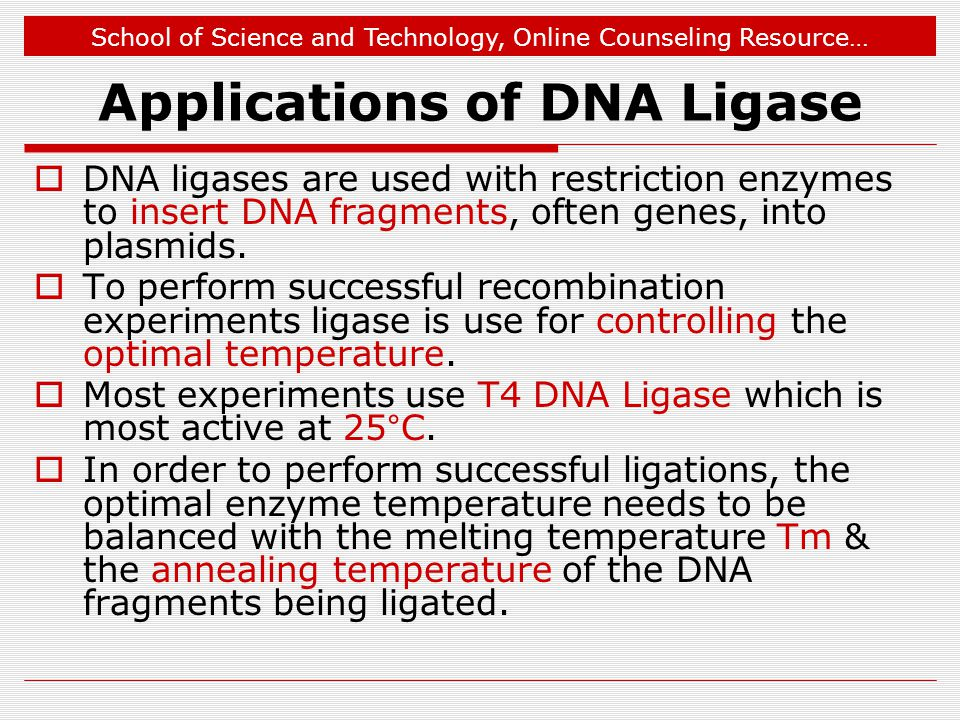 Applications of DNA Ligase