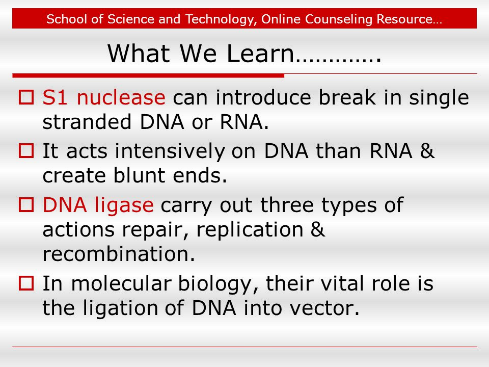 What We Learn…………. S1 nuclease can introduce break in single stranded DNA or RNA. It acts intensively on DNA than RNA & create blunt ends.