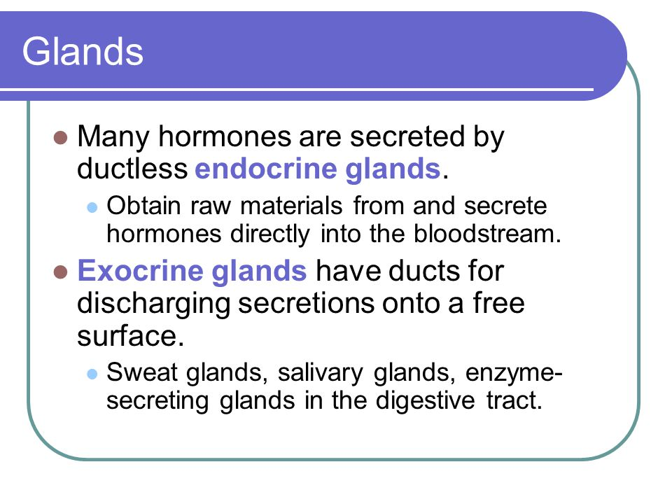 Glands Many hormones are secreted by ductless endocrine glands.